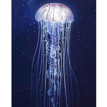 Diamanttavla Jellyfish 40x50