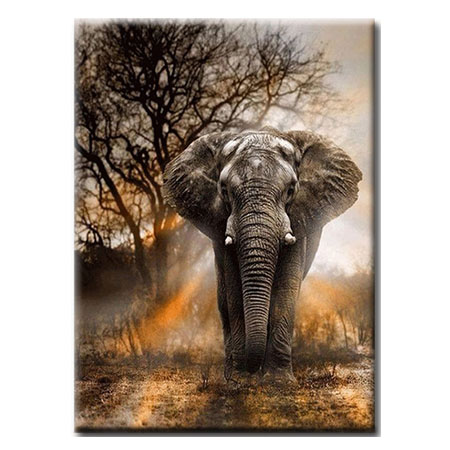 Diamanttavla Elephant 40x50