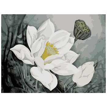 Paint By Numbers White Flower 40x50