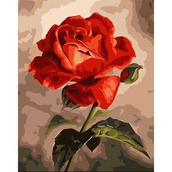 Paint By Numbers A Red Red Rose 40x50