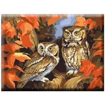 Paint By Numbers Autum Owls 40x50