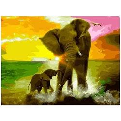 Paint By Numbers Elefanter Vattenlek 40x50