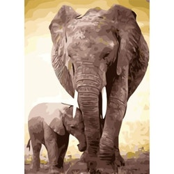 Paint By Numbers Elephant Motherlove  50x70