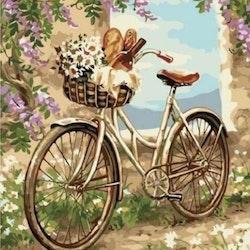 Diamanttavla Picknick Bike 40x50