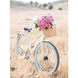 Diamanttavla Bicycle 40x50
