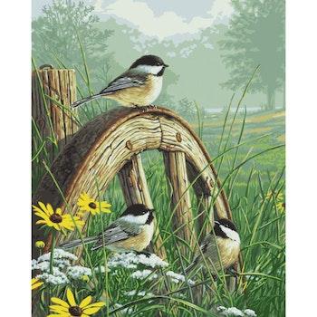 Diamanttavla Birds And Flowers 100x140