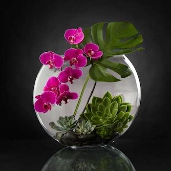 Diamanttavla Plant Flower 50x50