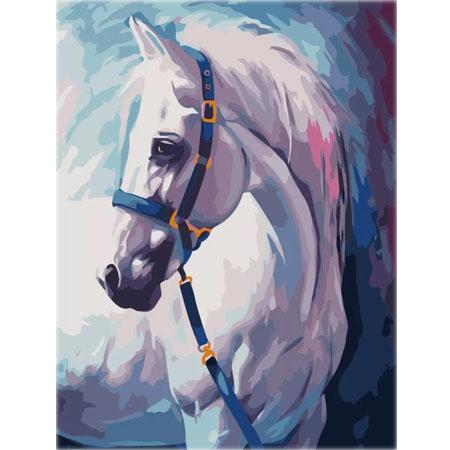 Paint By Numbers Vit Häst 40x50