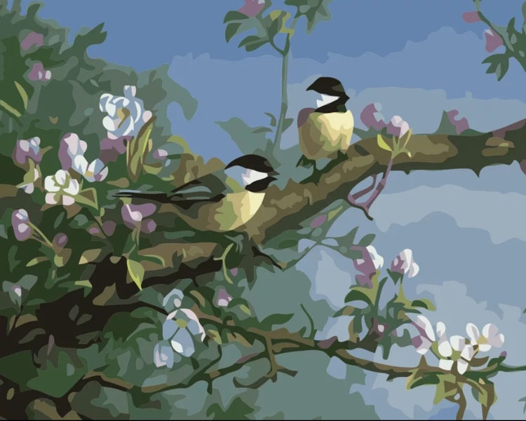 Paint By Numbers Summerbirds 40x50