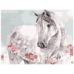 Paint By Numbers Horse Pink Poppy 40x50