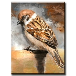 Diamanttavla (R) Sparrow Bird 30x40