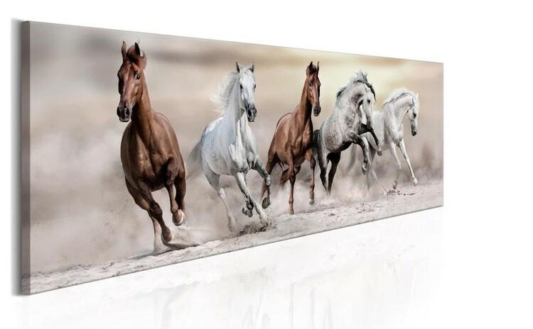 Diamanttavla Beautiful Horses 50x150  Leveranstid 1-3 Dagar