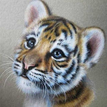 Diamanttavla Tigerbaby 40x40