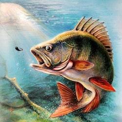 Diamanttavla Fishing 40x50 - Leveranstid 1-3 Dagar