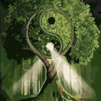 Paint By Numbers Tai Chi Tree 50x70- Leveranstid 1-3 Dagar