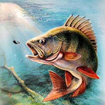 Diamanttavla (R) Fishing 40x50 - Leveranstid 1-3 Dagar