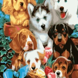 Paint By Numbers Dogs 50x70 -Leveranstid 1-3 Dagar