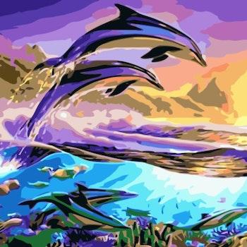 Paint By Numbers Ocean Dolphins 50x70 -Leveranstid 1-3 Dagar