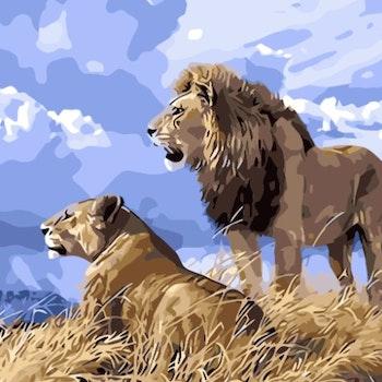 Paint By Numbers Lejonpar 50x70 -Leveranstid 1-3 Dagar
