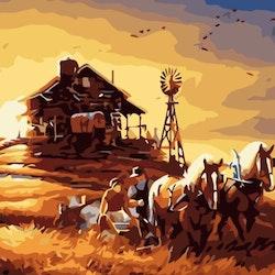 Paint By Numbers Evening Farmwork 50x70 -Leveranstid 1-3 Dagar