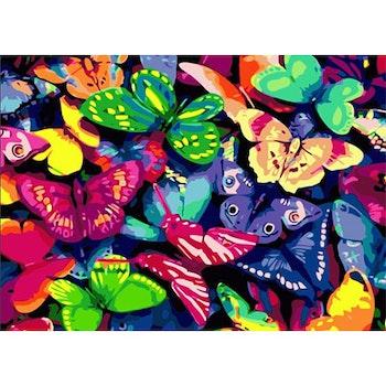 Paint By Numbers Fjärilar 50x70 -Leveranstid 1-3 Dagar