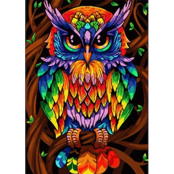 Paint By Numbers Color Owl 50x70- Leveranstid 1-3 Dagar