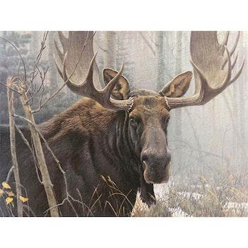 Diamanttavla (R) Moose 40x50 - Leveranstid 1-3 Dagar
