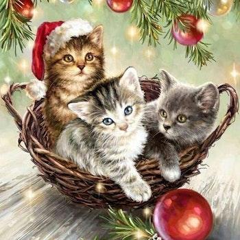 Diamanttavla Christmas Cats 40x50 - Leveranstid 1-3 Dagar