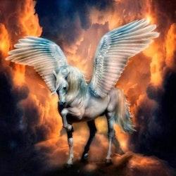 Diamanttavla Angel Horse 50x50 - Leveranstid 1-3 Dagar