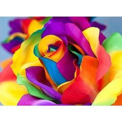 Diamanttavla Rainbow Rose 30x40- Leveranstid 1-3 Dagar