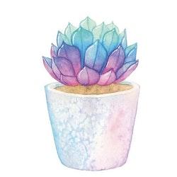 Diamanttavla Succulent Color 30x30 - Leveranstid 1-3 Dagar