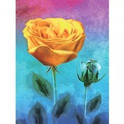 Diamanttavla Yellow And Blue Roses 30x40 - Leveranstid 1-3 Dagar