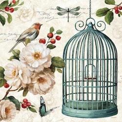 Diamanttavla Vintage Birdcage 50x50 - Leveranstid 1-3 Dagar
