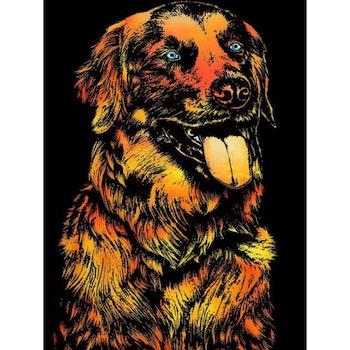 Scratch Painting Hund 41x28,7 cm - Leveranstid 1-3 Dagar