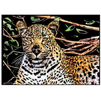 Scratch Painting Leopard 41x28,7 cm - Leveranstid 1-3 Dagar