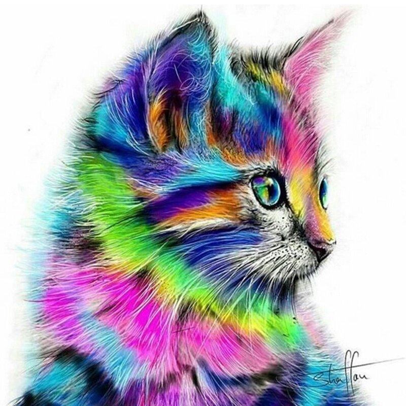 Diamanttavla Colorful Cat 30x40