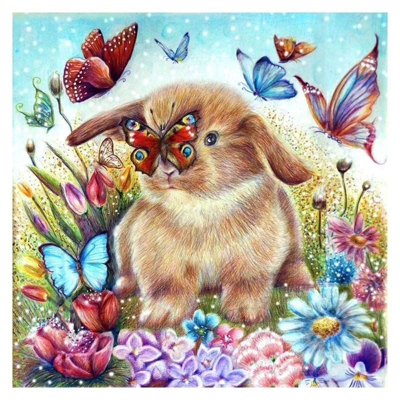 Rabbit And Butterfly 40x40