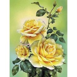 Diamanttavla Yellow Roses 30x40
