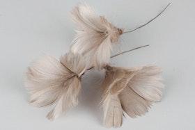 Fjäder Blom Mullvad 12 st