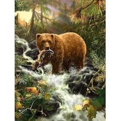 Diamanttavla Forest Bear 40x50