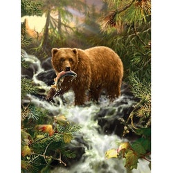 Diamanttavla Forest Bear 40x50