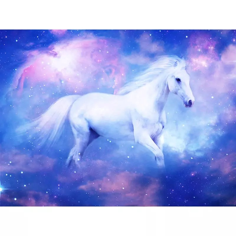 Diamanttavla Horse Sky 30x40