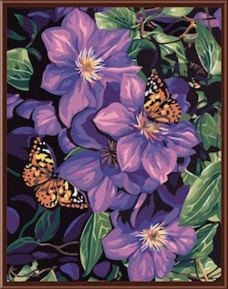 Paint By Numbers Butterfly And Flower 40x50