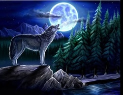 Diamanttavla Moonwolf 40x50