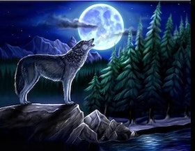 Diamanttavla Moonwolf 40x50