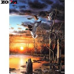 Diamanttavla Flying Duck 40x50