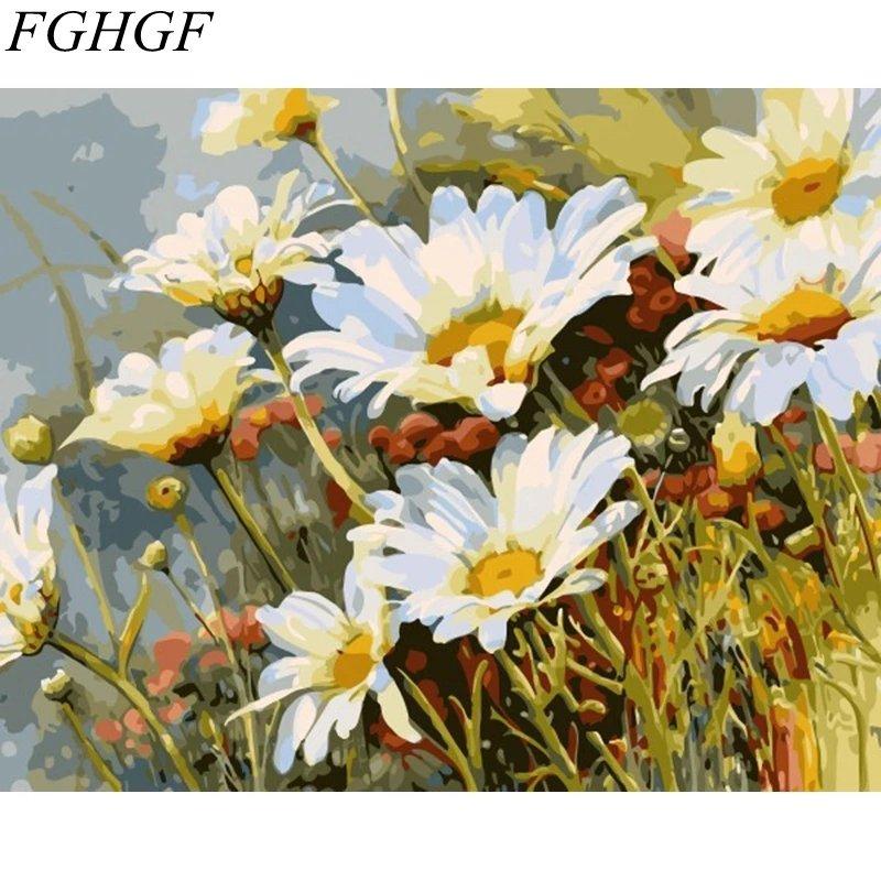 Paint By Numbers Prästkragar 40x50