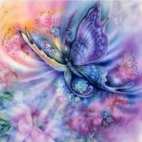 Diamanttavla Colourful Butterfly 40x50