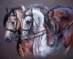 Diamanttavla Three Horses 40x50