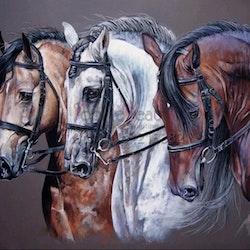 Diamanttavla Three Horses 50x60